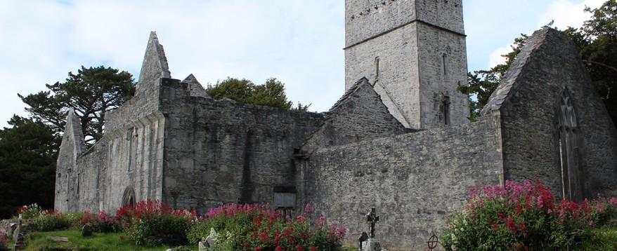 Muckross Abbey.