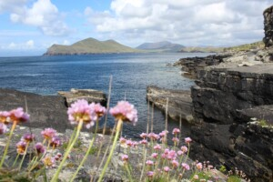 View from Tripod footprints on Valentia Island.